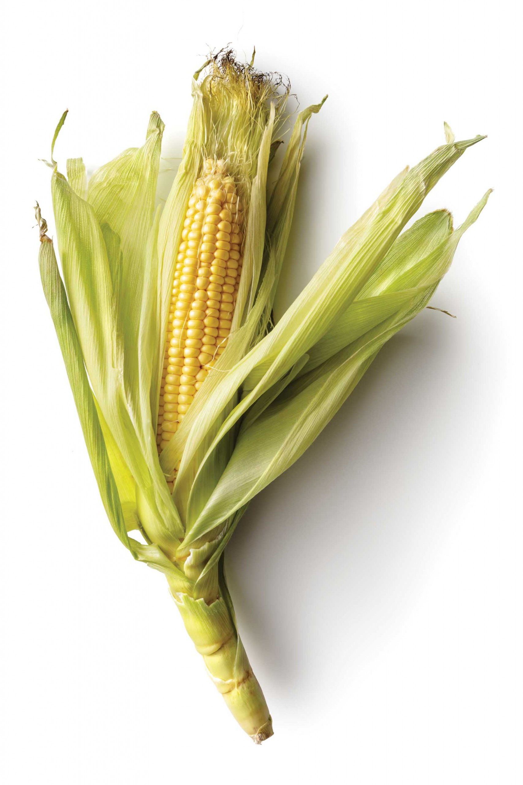 Vegetables: Corn Isolated On White Background